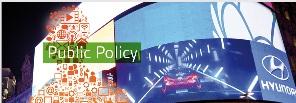 LGI public policy